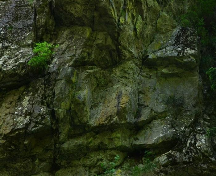 sfinx lazar